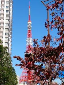 秋らしい晴天